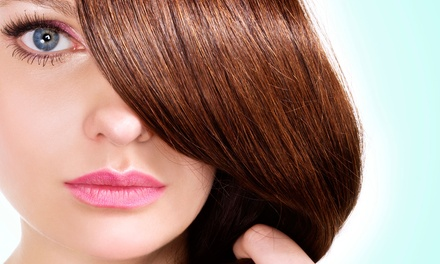 One or Two Brazilian Blowouts from Carolina Powell at Studio 24 (Up to 68% Off)