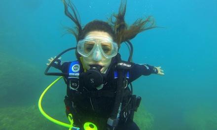 Bautismo de buceo con opción a reportaje fotográfico para 1 o 2 personas desde 34,95 € en Karapat Dive Gran Canaria