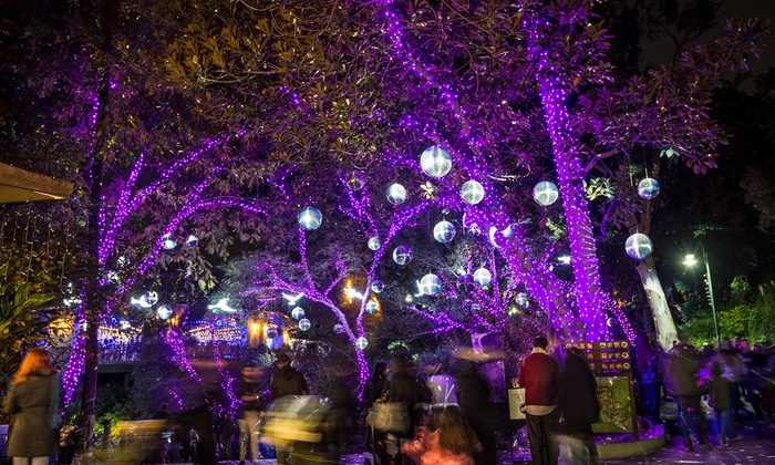 L A Zoo Lights In Los Angeles Ca Groupon