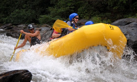 Three-Hour Whitewater Rafting Adventure for One or Two from Whitewater Express (Up to 42% Off)