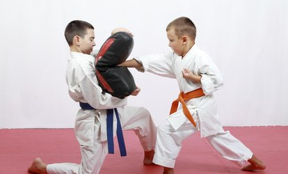 image for $45 for $145 voucher — Pruter's Sport Taekwondo <strong>Martial Arts</strong> Fitness