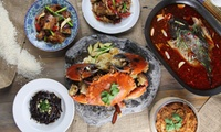 $50 or $100 to Spend on Food at Ricery Hurstville