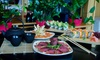 Kokai Sushi & Lounge - Doral: 20% Cash Back at Kokai Sushi & Lounge
