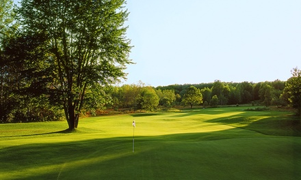 Golf at Black Forest and Wilderness Valley Golf (Up to 51% Off). Three Options Available.