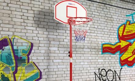 Panier de basketball avec roulettes à 49,90 €