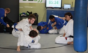 S2 BJJ: $29 for One Month of Unlimited Brazilian Jiu-Jitsu Classes at S2 BJJ ($100 Value)