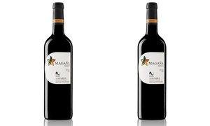 Two Bottles of 2012 Vina Magana Dignus at Vines Wine Merchants, plus 6.0% Cash Back from Ebates.