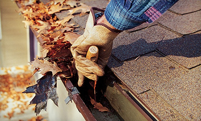 Anasinski Cleaning, Inc. - Chicago: Gutter Cleaning for a One-Story or Two-Story Home from Anasinski Cleaning, Inc. (Up to 54% Off)