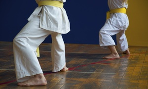 Shaolin Center of Seattle: Up to 71% Off of Martial-Arts Lessons — Shaolin Center of Seattle