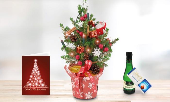 mini weihnachtsbaum geschenke groupon goods. Black Bedroom Furniture Sets. Home Design Ideas