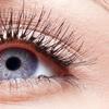 Up to 43% Off Eyelash Extensions at Creme De La Creme Studio