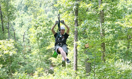 Zipline Tour for Two or Four at Grafton Zipline (Up to 35% Off)