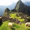 Machu Picchu: 6-Night Guided Trek