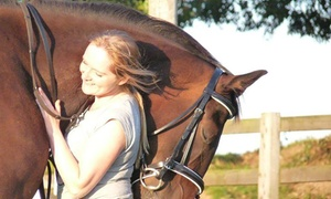 Lee Valley Equestrian: Horse Trekking for One or Two at Lee Valley Equestrian (Up to 50% Off)