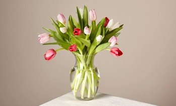 $15 Off Tulip Bouquet with Vase from FTD.com
