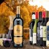 79% Off 13 Bottle Wine & Decanter Bundle from Heartwood & Oak