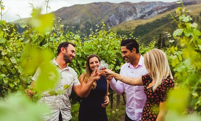 image for Guided Wine or Twilight Wine and Beer Tour for 1 ($139) or 6 People ($809) with Altitude Tours (Up to $1,134 Value)