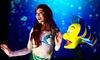 "Disney's The Little Mermaid - Roxie Theatre: Disney's ""The Little Mermaid"" (June 25–August 13)"