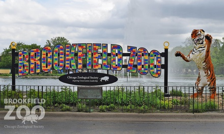 Chicago Kids Activities Deals In Chicago Il Groupon