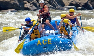 51% Off Raft Trip at Ace Adventure Resort at Ace Adventure Resort, plus 6.0% Cash Back from Ebates.