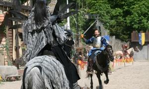EQUESTRIO: 1 place adulte ou enfant pour assister à La Légende des Chevaliers dès 6,50 € avec Equestrio
