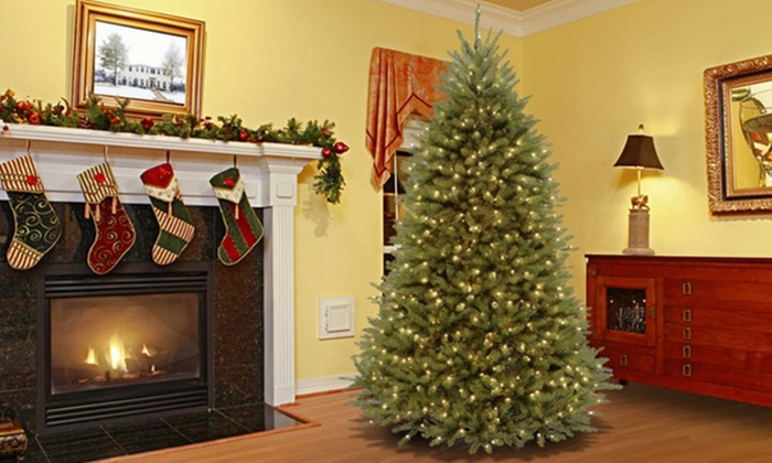 Dunhill Fir Christmas Tree.Dunhill Fir 7 5 Christmas Trees Groupon