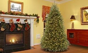 Dunhill Fir 7.5' Christmas Tree