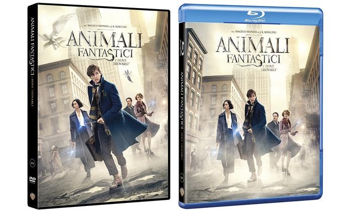 Risultati immagini per animali fantastici e dove trovarli dvd