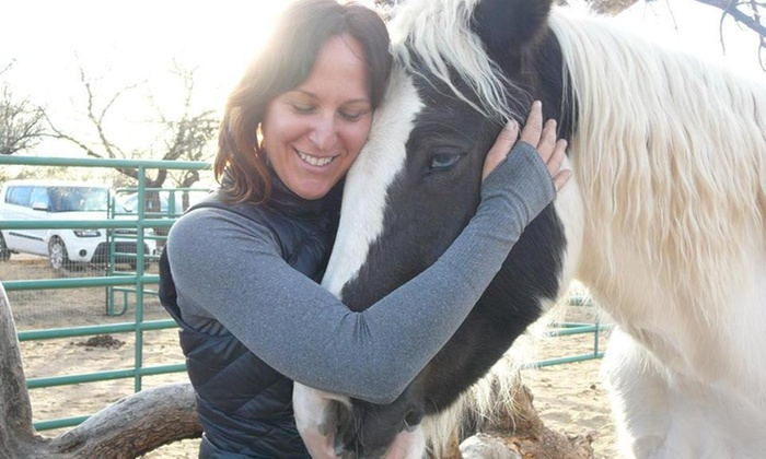 Red Horse Eq - Amado: $150 for $300 Worth of Life Coaching — Red Horse EQ