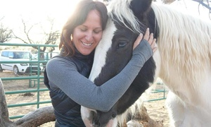 Red Horse Eq: $150 for $300 Worth of Life Coaching — Red Horse EQ