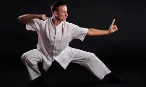 Rothrock's Kung Fu & Tai Chi: 5 or 10 Kung Fu Fit Classes at Rothrock's Kung Fu & Tai Chi (Up to 79% Off)