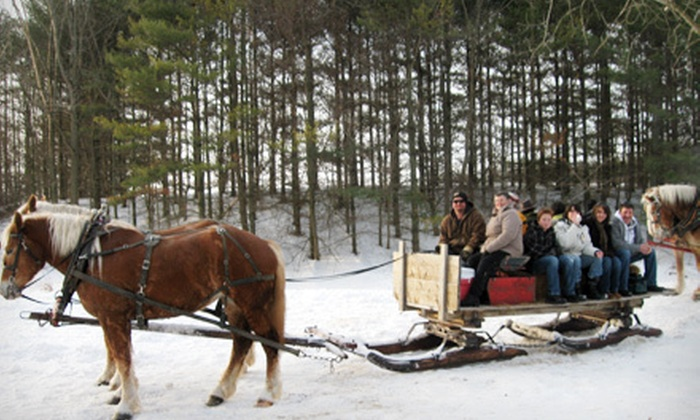 Humes Horse and Carriage Rides - Middlesex Centre: 60-Minute Sleigh Ride with Mid-Ride Bonfire for Two or Four from Humes Horse and Carriage Rides (Up to 72% Off)