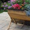 Garden Grow Wooden Trug