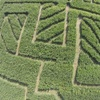 Up to 50% Off Corn Maze and Hayride at Clodbuster Farms