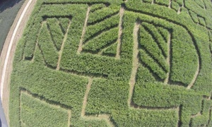 Up to 50% Off Corn Maze and Hayride at Clodbuster Farms at Clodbuster Farms, plus 6.0% Cash Back from Ebates.