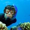Liquid Image XSC VideoMask Underwater Camera Mask
