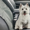 Single Car Seat Pet Cover