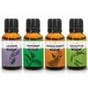 Serene Living Essential Oils (6-Pack)