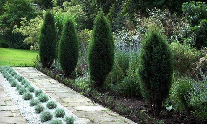 Executive Landscape Management - Severna Park: $90 for $199 Worth of Landscaping from Executive Landscape Management