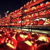 Up to 53% Off Pumpkin Carving