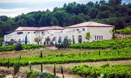 Visite et initiation œnologique, avec tapas ou dîner en option, pour 2dès 19,90 € au Château de Valloubière