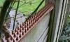 10 der 20 Stück Abwehr-Spikes für den Zaun