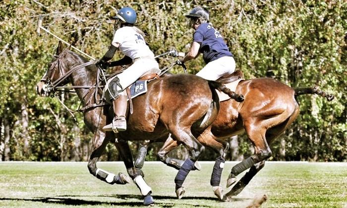 Polo Atlanta - Chukkar Farm: Two or Four 60-Minute Polo 101 Lessons at Polo Atlanta (Up to 86% Off)