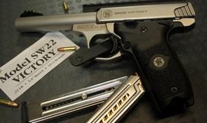 Centrum Strzeleckie AGVO: Godzinne wejście na strzelnicę z instruktorem, wynajęcie broni od 29,99 zł i więcej w Centrum Strzeleckim AGVO