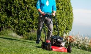 Yougenio: Giardiniere professionista per giardini o terrazzi, mezza o intera giornata con Yougenio (sconto fino a 79%)