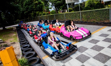 Two or Four Pro Passes or Pro Birthday Party for Up to Eight at Malibu Grand Prix (Up to 62% Off)