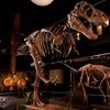 Up to 31% Off Houston Museum of Natural Science at Sugar Land