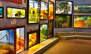 Lutz Children's Museum: $15 for General Admission for Four at Lutz Children's Museum ($28 Value)