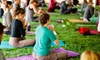 58% Off One Workshop Pass to Maine YogaFest 2019