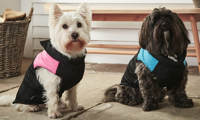 Bunty Warm Wrap-Around Pet Jacket from £4.99